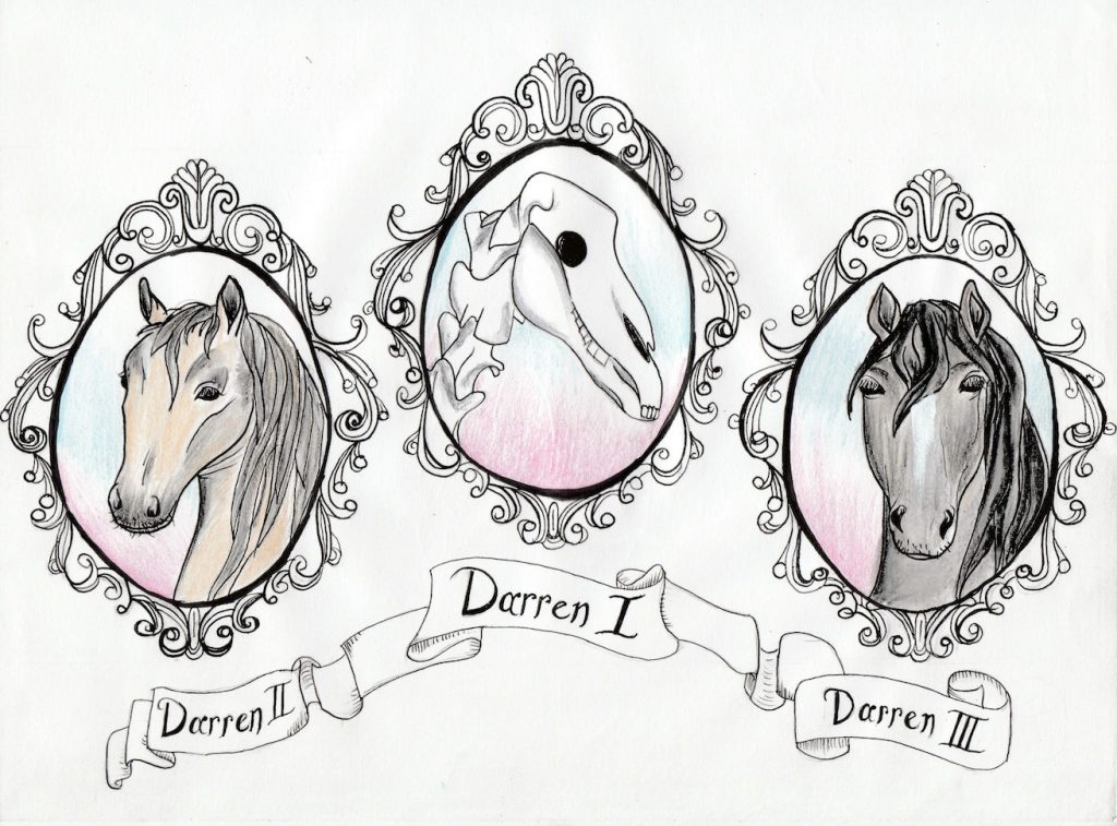 A drawing of the three Darren horses, showing their heads in elaborate oval frames. Darren I is in the middle as a skull and the other Darrens are either side looking majestic.